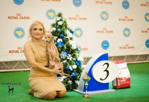 Luccila Forum Romanum-Crystal Cup of Ukraine 2013