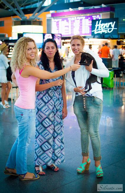 airport-dog-Silvento-Hestia-levretka